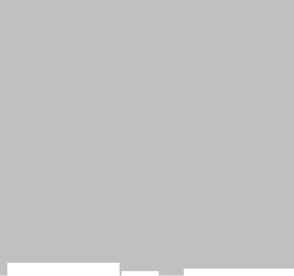 logo-start-silber